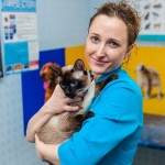 Ветеринарные услуги. Вет-Плюс.