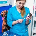 Ветеринарный врач Алена Александровна